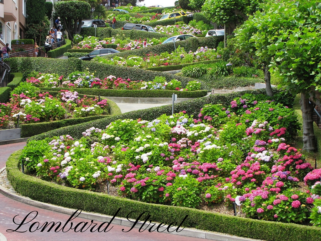 Free Things To Do In San Francisco On A Day Tour | Sanfrancisco Private Tour Blog